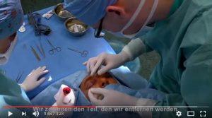 schonheitschirurgie-tschechien-prag